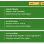 PSL Final Ticket