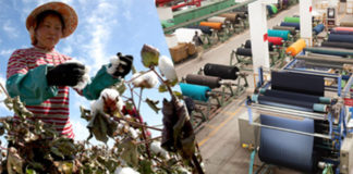 Chinese Textile Units Show Interest in Pakistan