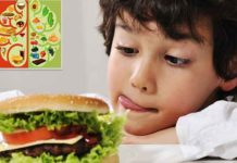 How Junk Food Affects Your Brain Functioning