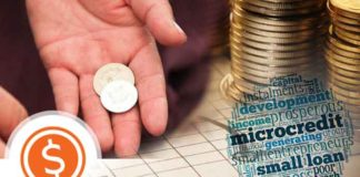 Microcredit Role in Poverty Alleviation and Economic Development