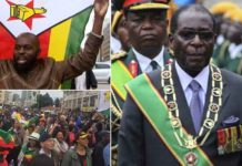 Protestors Celebrating End of President Robert Mugabe's Era