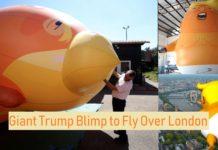Giant Trump Blimp