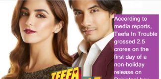 Teefa In Trouble Box Office Business