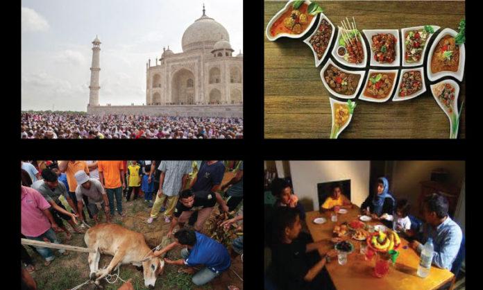 Eid-ul-Adha celebration Ideas