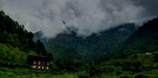 Bhutan Forestaion World Bank