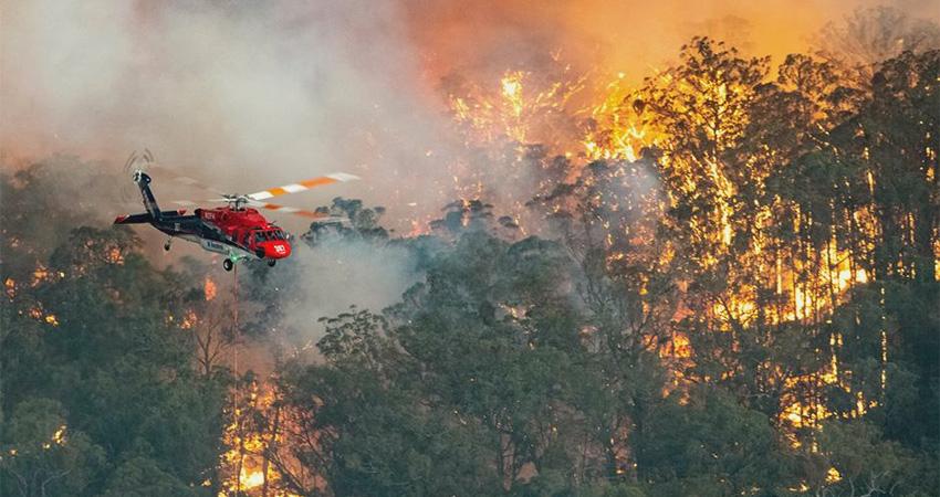 cause-of-bushfire-in-australia