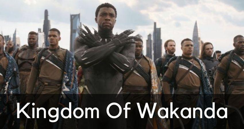 Disney Plus Series Kingdom of Wakanda
